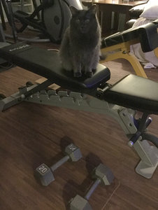 Nan_WorkoutPartner_20.jpg